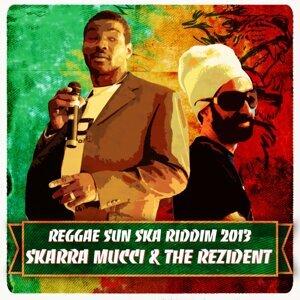 Riddim Reggae Sun Ska, Vol. 16 - 2013