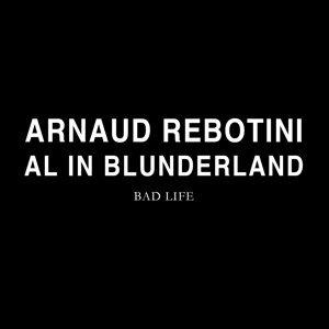 Al in Blunderland