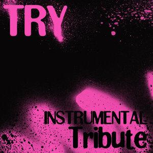 Try (Karaoke Tribute to Pink)