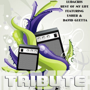 Rest of My Life (Deluxe Tribute to Ludacris Feat. Usher & David Guetta)