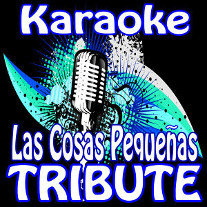 Las Cosas Pequenas (Karaoke Tribute To Prince Royce)