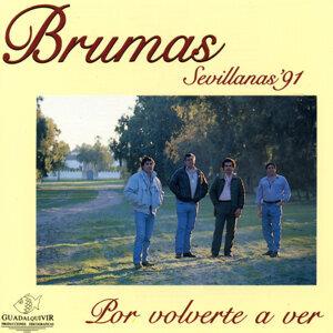 Sevillanas 91' por Volverte a Ver
