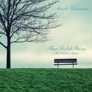 These Foolish Things - The Ballad Album