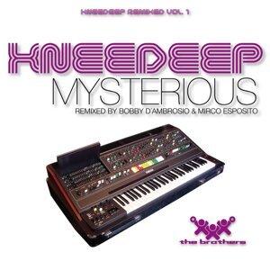 Mysterious - Knee Deep Remixed Vol. 1