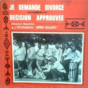 Hilarion Nguema et l'orchestre Afro Succès, vol. 2