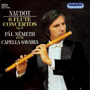 6 Flute Concertos Op.11