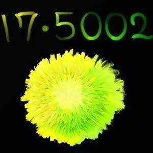 17.5002