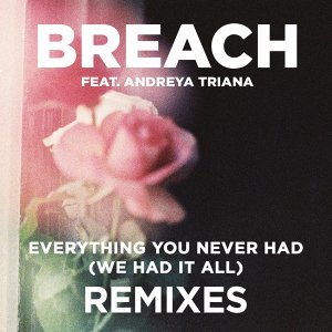 Everything You Never Had (We Had It All) (feat. Andreya Triana) - Remix Package