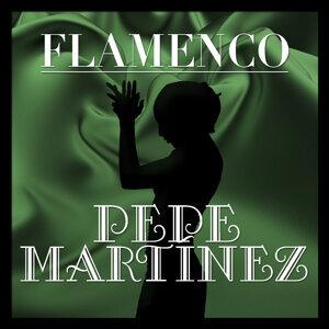 Flamenco: Pepe Martínez