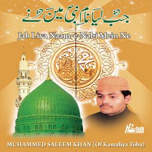 Jab Liya Naam-e-Nabi Mein Ne - Islamic Naats