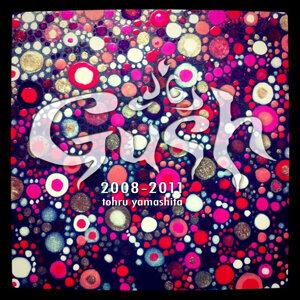 Gush 2008-2011