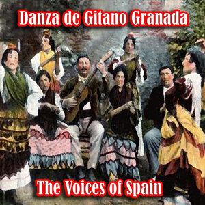 Danza de Gitano Granada