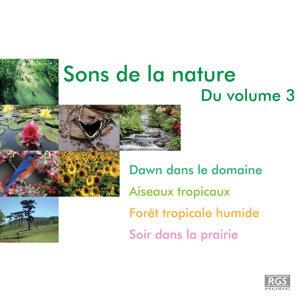 Sons De La Nature Du Volume 3