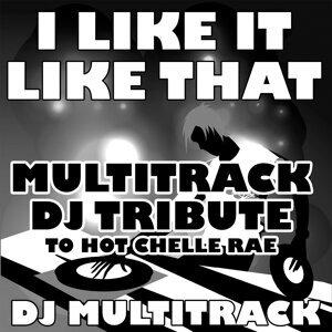 I Like It Like That (Multitrack DJ Tribute to Hot Chelle Rae)