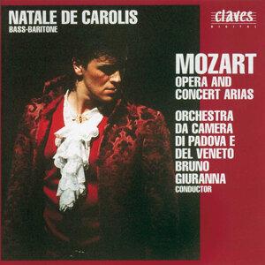 Mozart : Opera & Concert Arias