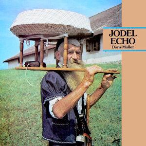Jodel Echo : Swiss Folk Music (Evasion 1970)