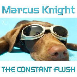 The Constant Flush