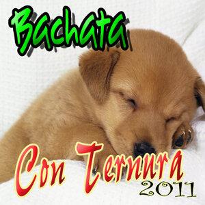 Bachatas y Melodias (Edicion 2011)