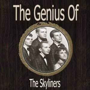 The Genius of Skyliners