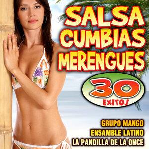 Salsa, Cumbias y Merengues
