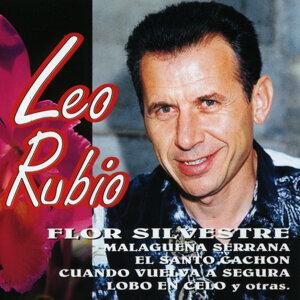 Leo Rubio: Flor Silvestre