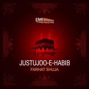 Justujoo-E-Habib