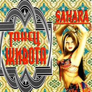 Belly Dance - Sahara