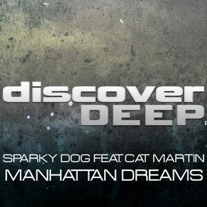 Manhattan Dreams
