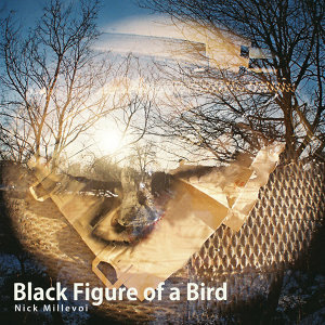 Black Figure of a Bird