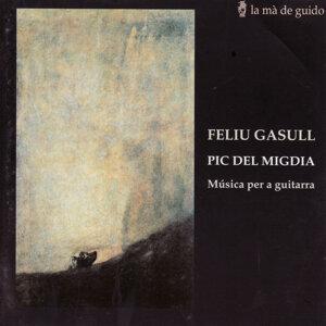 Feliu Gasull: Pic del Migdia