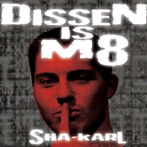 Dissen is M8