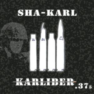 Karliber .375