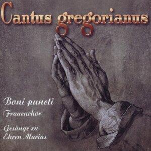 Cantus Gregorianus 3