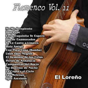 Flamenco Vol. 11