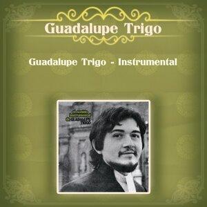 Guadalupe Trigo - Instrumental