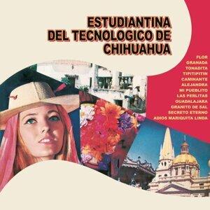 Estudiantina del Tecnológico de Chihuahua
