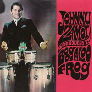 Boogaloo Frog