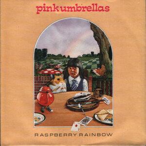 Raspberry Rainbow