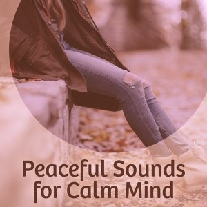 Peaceful Sounds for Calm Mind – Rest All Day, Sounds to Calm Down, New Age Music, Inner Silence, Spirit Calmness