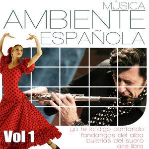 Musica Ambiente Española. Flauta, Guitarra y Compas Flamenco. Vol 4