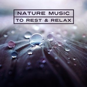 Nature Music to Rest & Relax – New Age Music, Sounds of Nature, Calm Waves, Healing Therapy