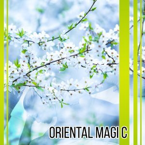 Oriental Magic – Sounds for Spa, Wellness, Pure Mind, Healing Reiki, Asian Zen Spa, Sensual Massage, Deep Meditation, Relaxation Music
