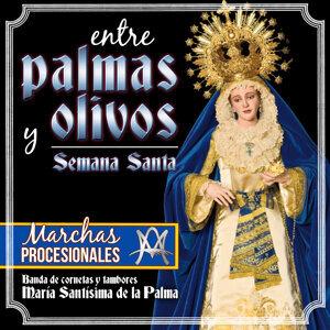 Entre Palmas y Olivos. Semana Santa. Marchas Procesionales