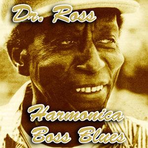 Harmonica Boss Blues