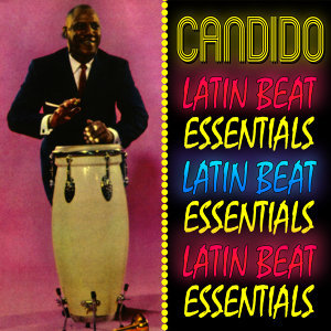 Latin Beat Essentials