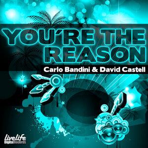 You're the Reason - Single