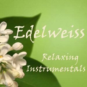 Edelweiss - Relaxing Instrumentals