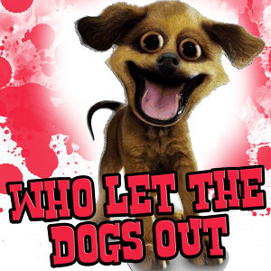 Who Let The Dogs Out - Tribute