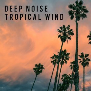 Tropical Wind