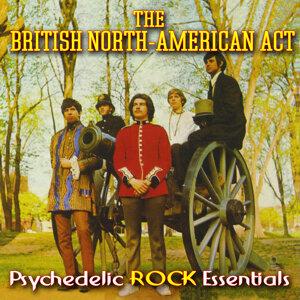 Psychedelic Rock Essentials